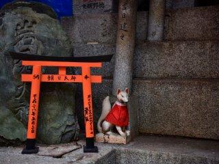 Kitsune-san menjaga gerbang torii