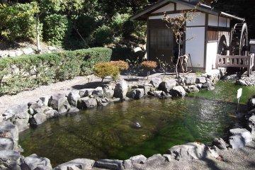 Kiyomizuyama Park in Shizuoka