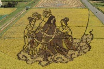 2011 rice art design.
