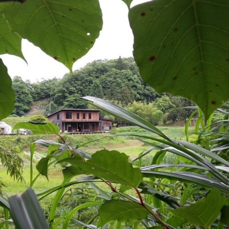 Experiencing Rural Chiba with Tabica