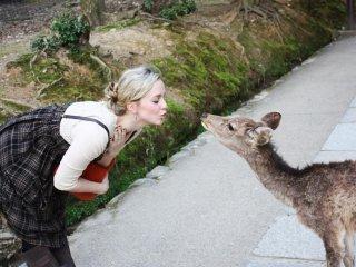 Поцелуй от оленя