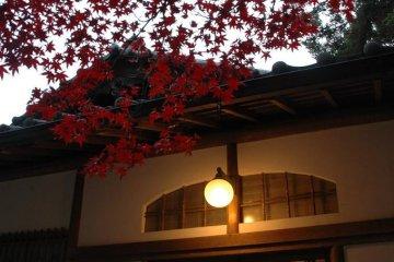岛上华丽复古日式建筑