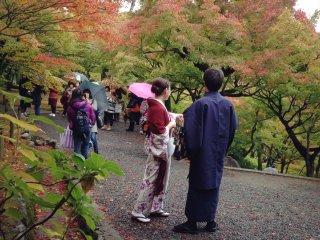 كيوتو وقت الخريف