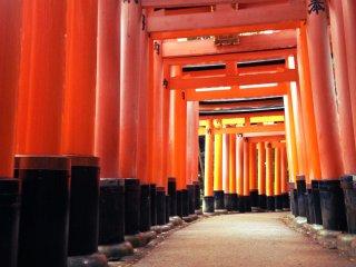 معبد فوشيمي ايناري - كيوتو