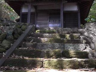 Поднимитесь по лестнице и вы придёте в другой зал, находящийся на лесной поляне