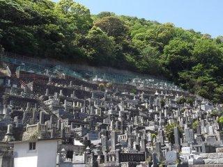 Впечатляющее кладбище на склоне холма