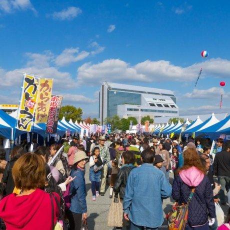 Miki Hardware Festival