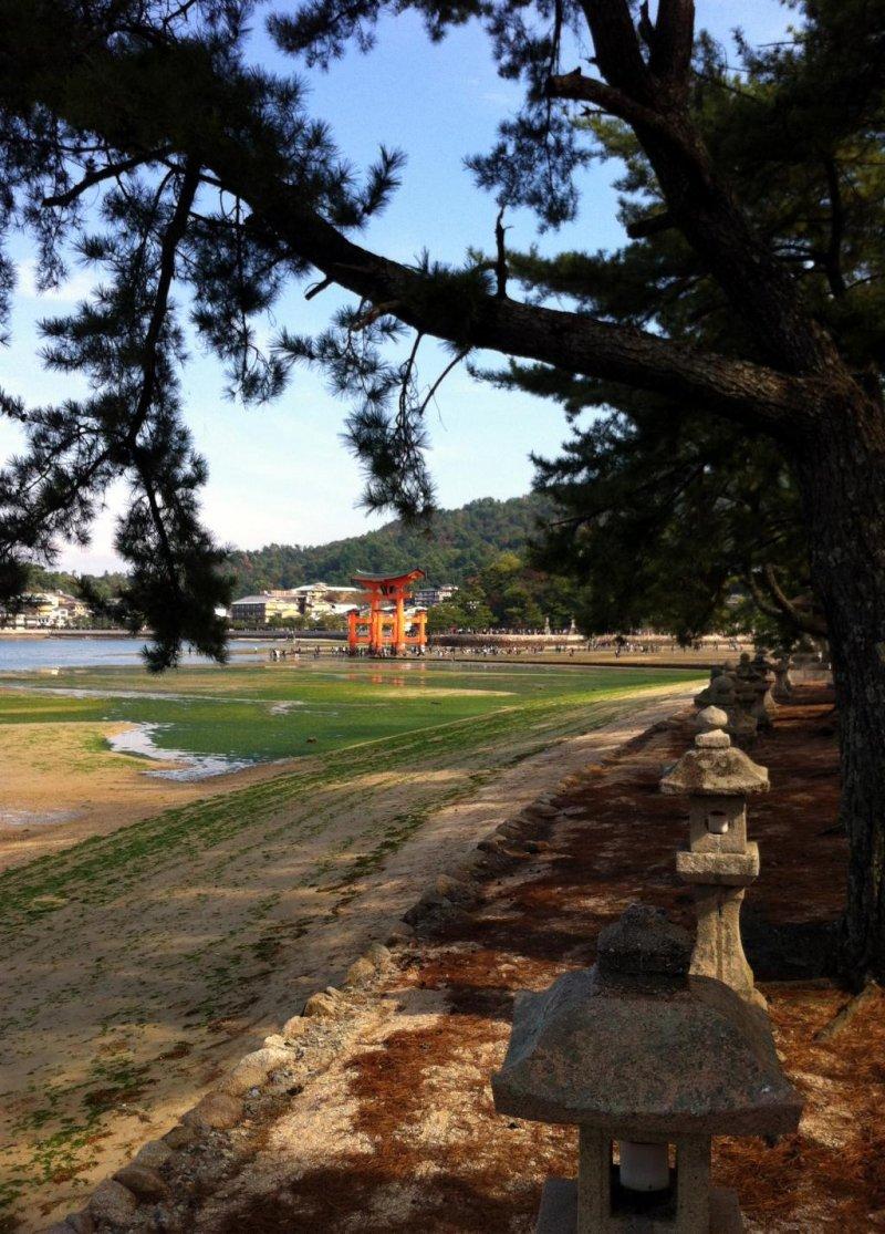 The torii on Miyajima from near Kiyomori-Chaya
