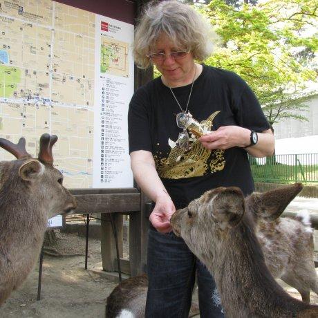 日本の都会で出あう動物たち