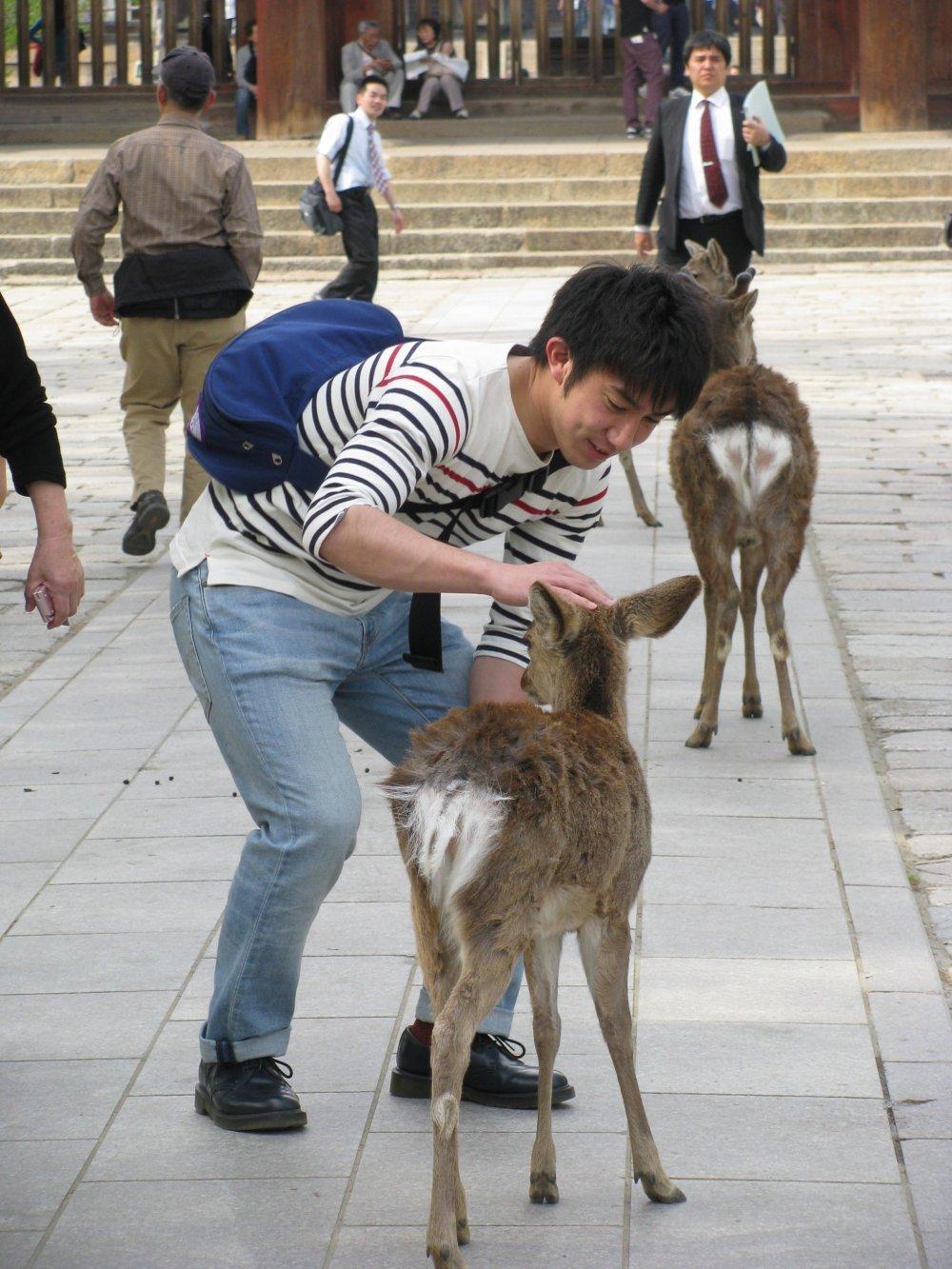 Pengunjung sangat ramah dengan para rusa