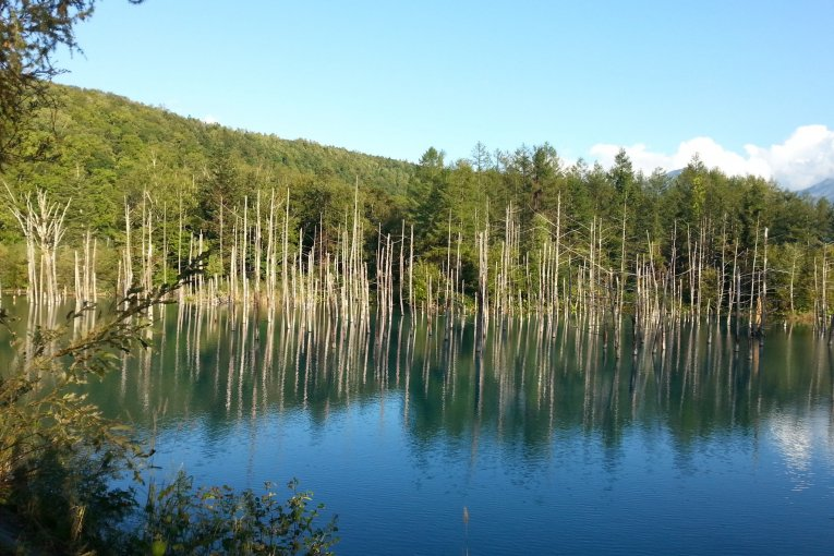 Biei's Blue Pond & Shirahige Falls