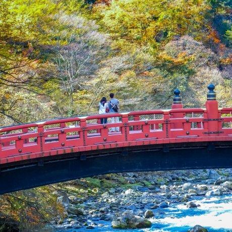 Walking Historical Nikko