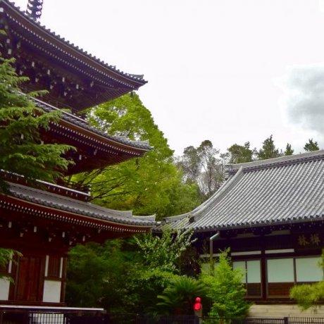 高輪 東禅寺