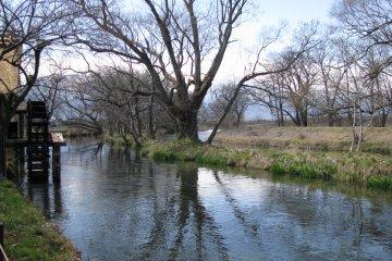 Река, воду которой используют для орошения плантации