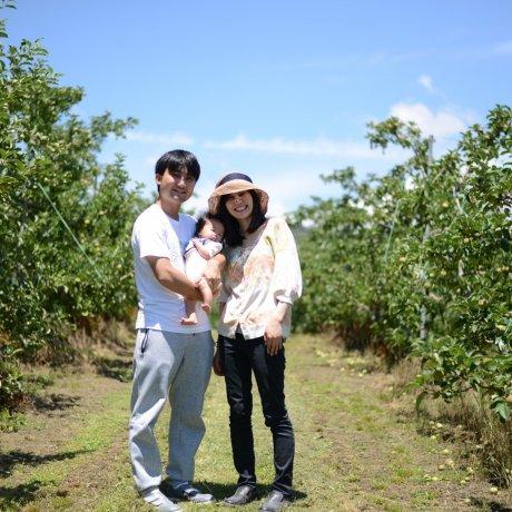 Hái táo ở Matsumoto