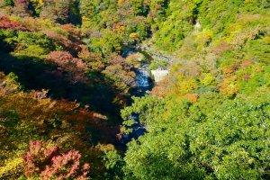 秋色の早川渓谷