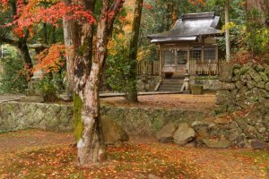 Takijiri-oji-Gateway of the Nakahechi-in Autumn
