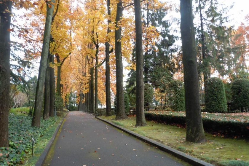 Lounging on a bench or strolling under tall trees offers respite from concrete and traffic