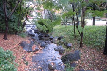 Kids and adults alike can enjoy crossing creeks stepping from stone to stone