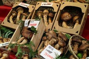 Органические грибы