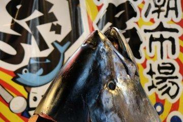 Голова тунца, оставшаяся после демонстрации разделки