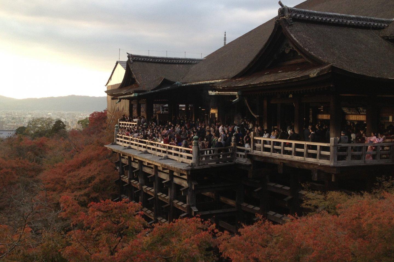 Pemandangan terbaik yang saya lihat di Kyoto. Dan mungkin di Jepang.