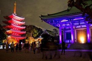 A purple Tocho-jiand its pagoda; some ofthe lighting changes slowly
