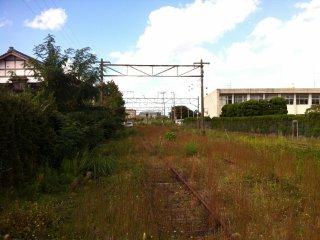 J'adore me promener sur des rails de train inutilisés, sur lesquels la nature a repris ses droits