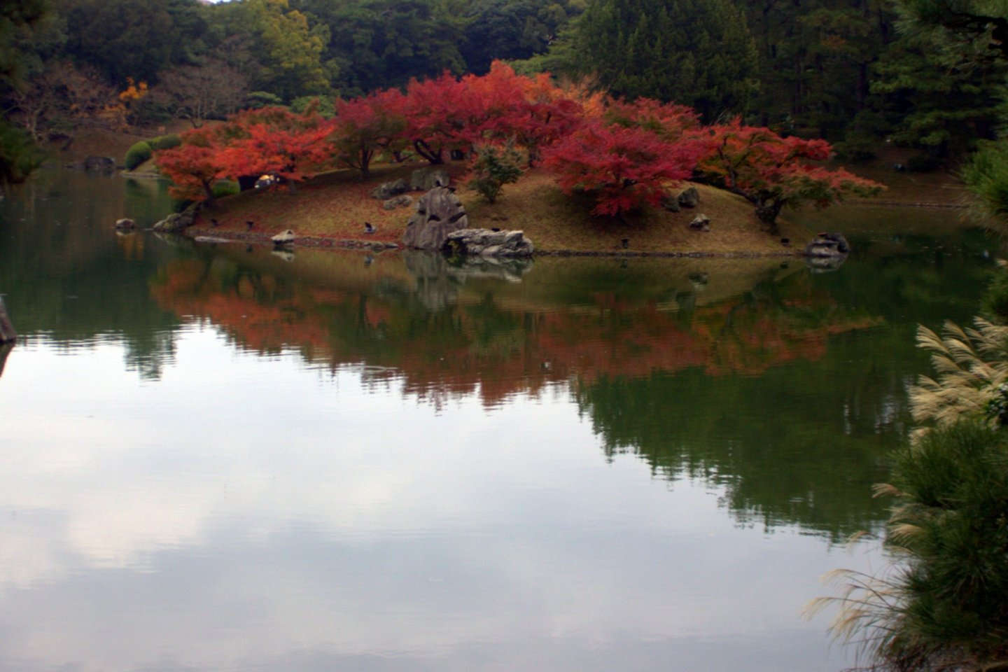 No matter the time of year one visits, Ritsurin Park affords the visitor nearly endless photo opportunities