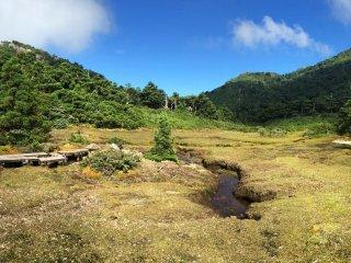 เส้นทางจะเป็นป่าไม้ มีบางช่วงที่เป็นพื้นที่เปิดกว้าง บนทางที่ปูด้วยไม้และก้อนหิน