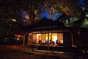 A teahouse is also in the garden for you to take a break from the crowds and relax