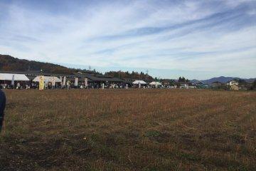 Hanaminosato. The soba field.