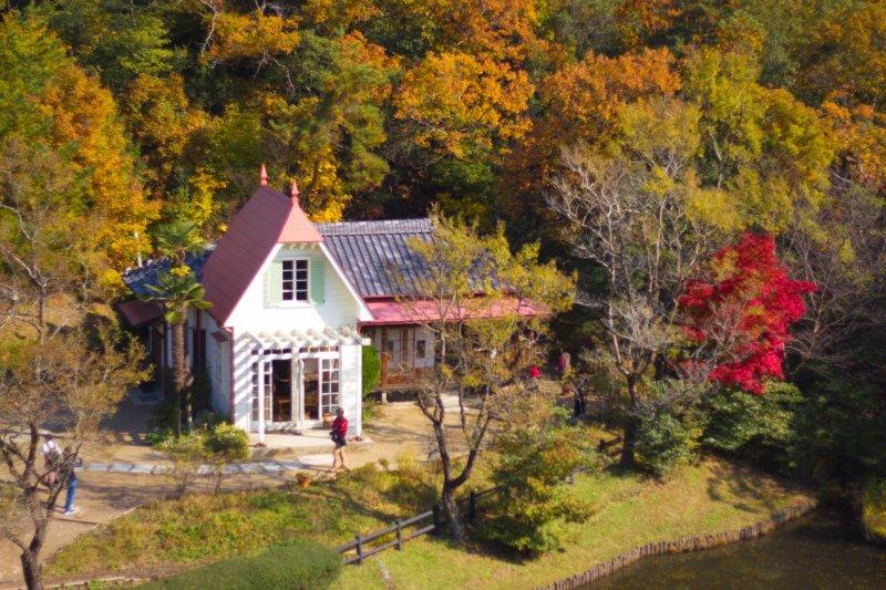 Nestled amongst autumn leaves giving a magical Ghibli feeling