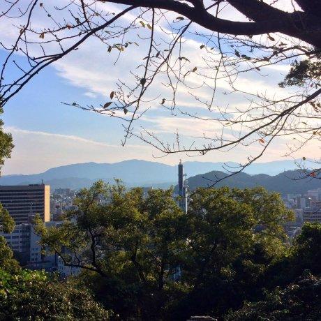 Đại học Tokushima
