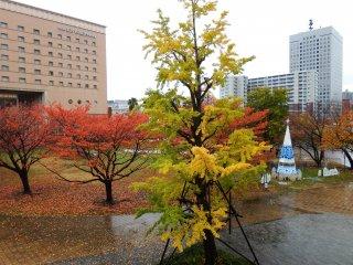 Khung cảnh đầy màu sắc đợi bạn khi đến gần khách sạn Navios