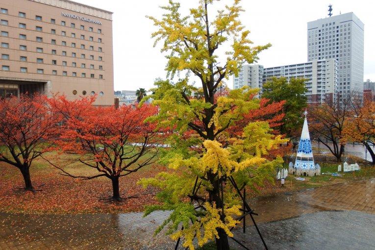 요코하마의 미나토 미라이에서 가을을 보내다