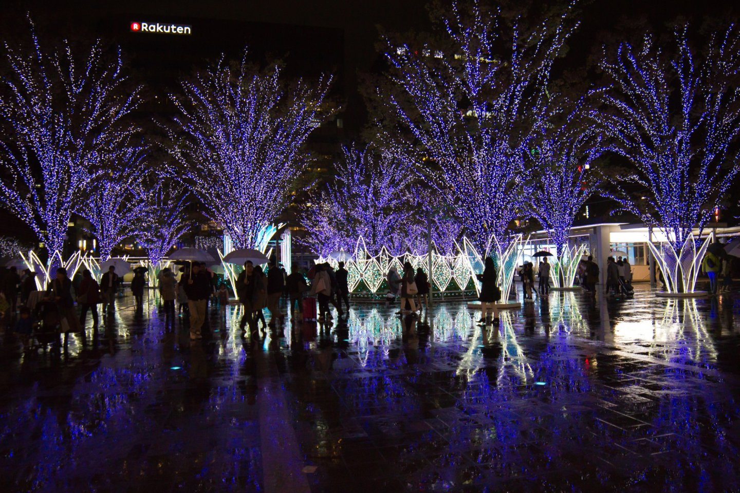 Absolutely stunning Christmas lights outside JR Hakata Station