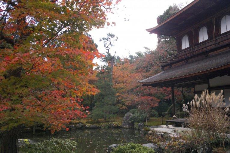 Ginkaku-ji di Musim Gugur