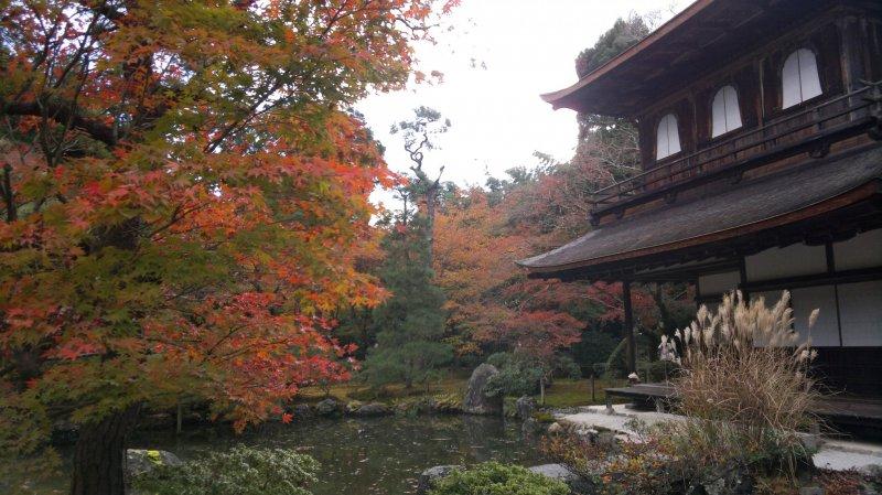 Гинкаку-дзи осенью