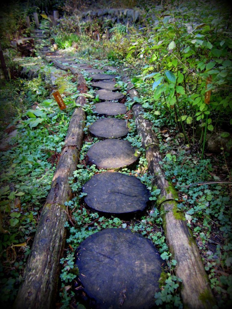 Instead of stones, this walkway is made with tree rounds