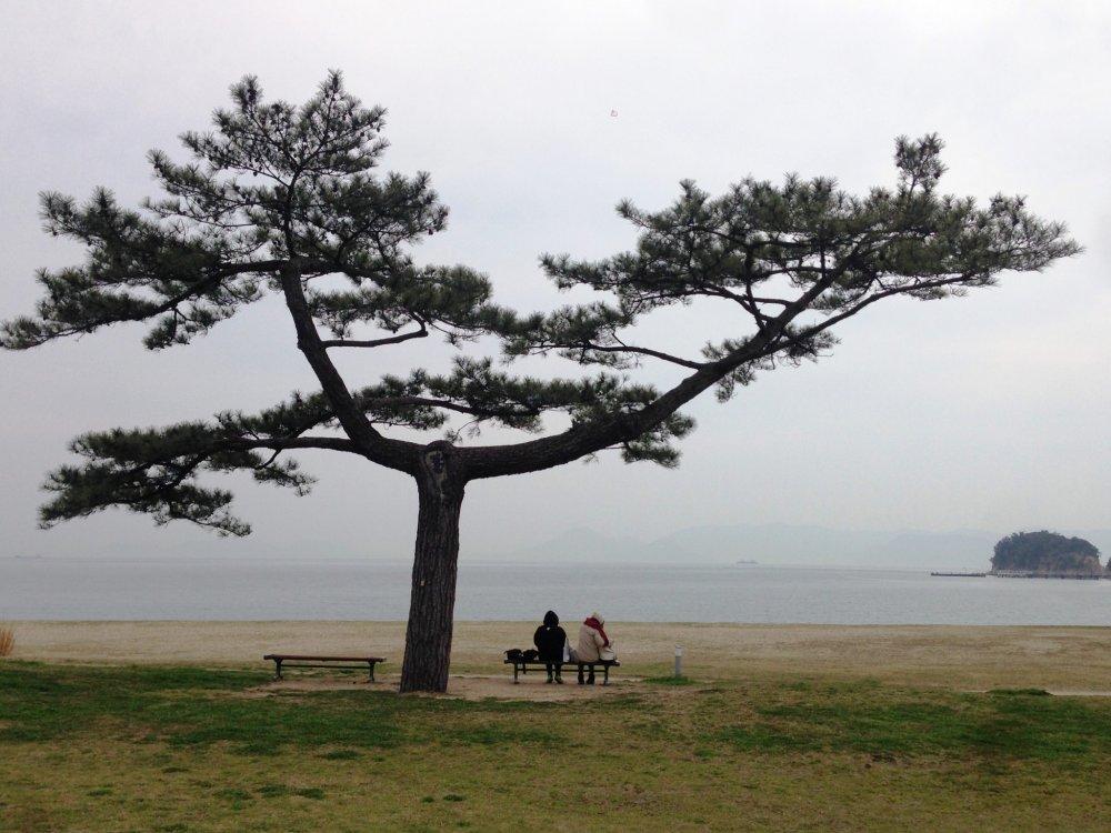 Breakfast In Naoshima Kagawa Japan Travel Tourism Guide - Japan map naoshima