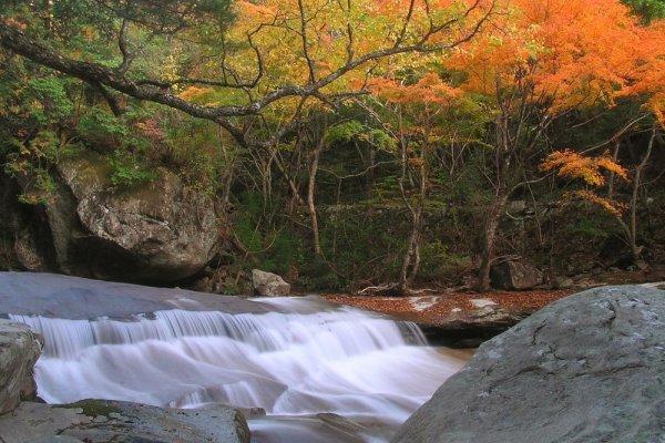 Beautiful Nametoko Gorge, perfect for canyoning