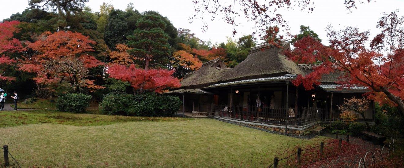โรงน้ำชาท่ามกลางใบไม้เปลี่ยนสี