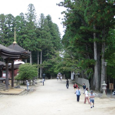 The Sacred Valley of Koyasan