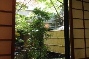 Beautiful courtyard garden at Kitchen Kanra
