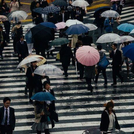 24 Hours in Shibuya and Harajuku