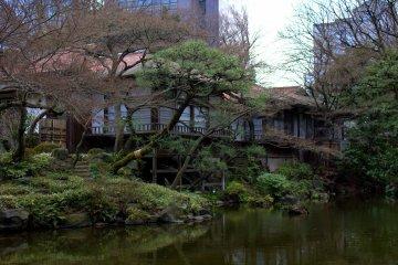 小石川後樂園的花園值得您探索