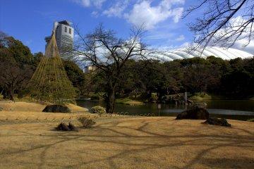 玲瓏的庭園與堂皇的東京巨蛋之間形成的對比令人震懾