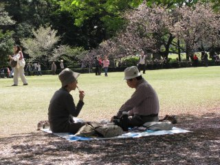 Piknik keluarga