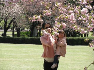Mother and daughter enjoying sakura